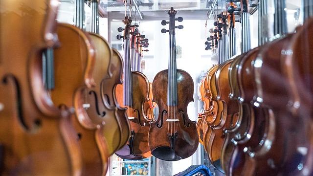 raisons d apprendre le violon