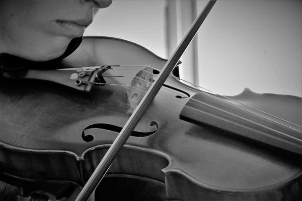 Les mentonnières et les coussins de violon