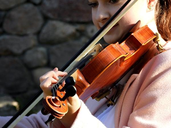 Les mentonnières du violon - Allegro Musique