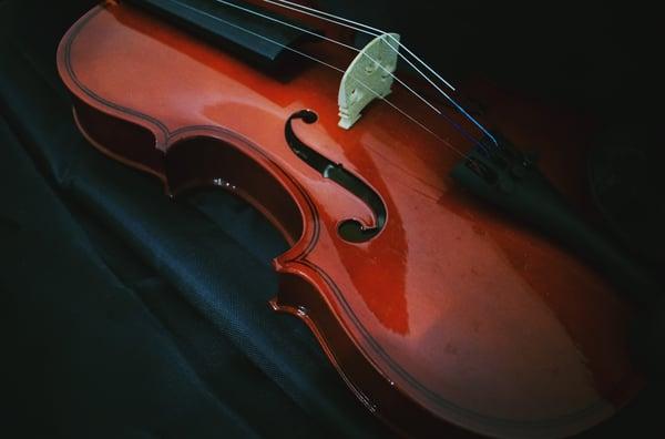 Les violons acoustiques et électriques