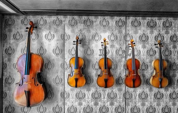 Violon Allegro Musique