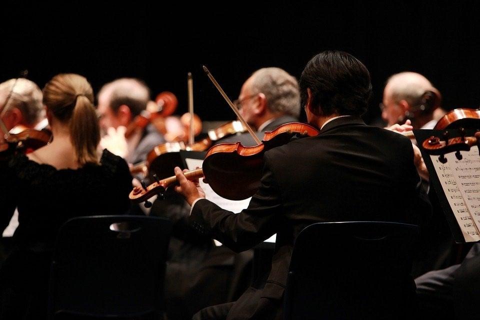 15 violons parmi les_plus_precieux